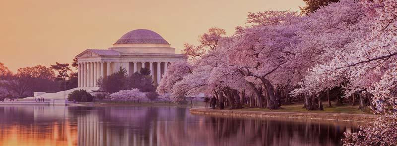 Los mejores eventos celebrados en Washington DC