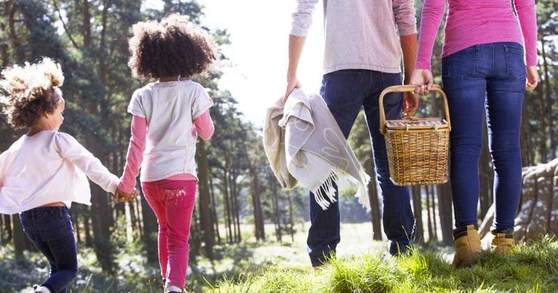 Actividades gratis en Washington DC para disfrutar en familia