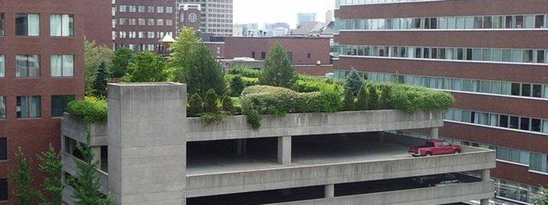 Cambridge Center Roof Garden