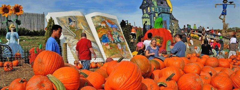 Pumpkinland Filadelfia