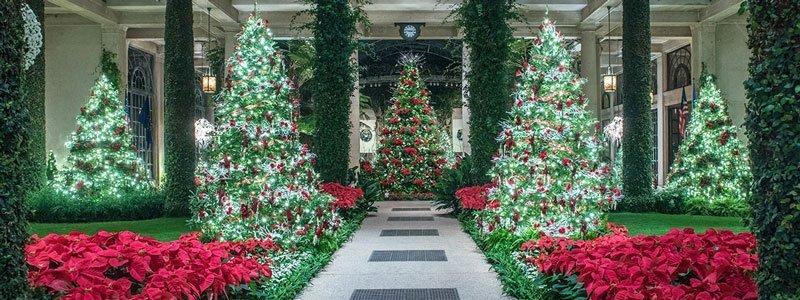 Longwood Garden - Navidad en Filadelfia