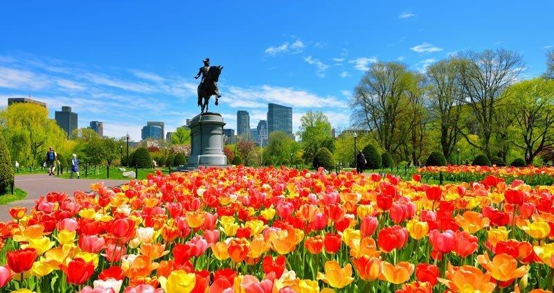 Guía para disfrutar Boston durante la primavera