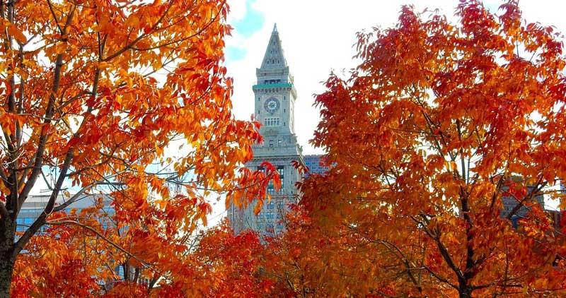 Los mejores lugares para ver el follaje de otoño en Boston