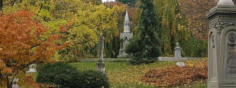 ver el follaje de otoño en Boston